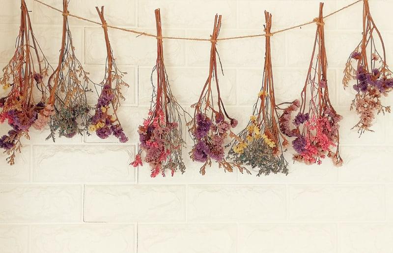 arranjos de flores secas