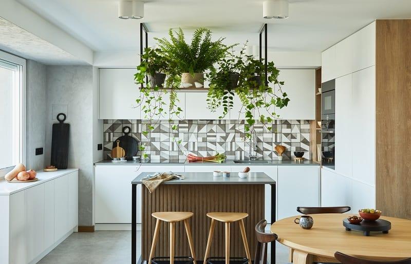 cozinha com ilha e plantas